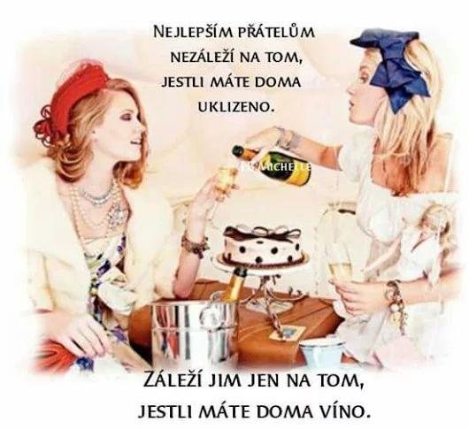 Najlepším priateľom nezáleží na tom, či máte doma upratané. Záleží im len na tom, či máte doma víno :)))