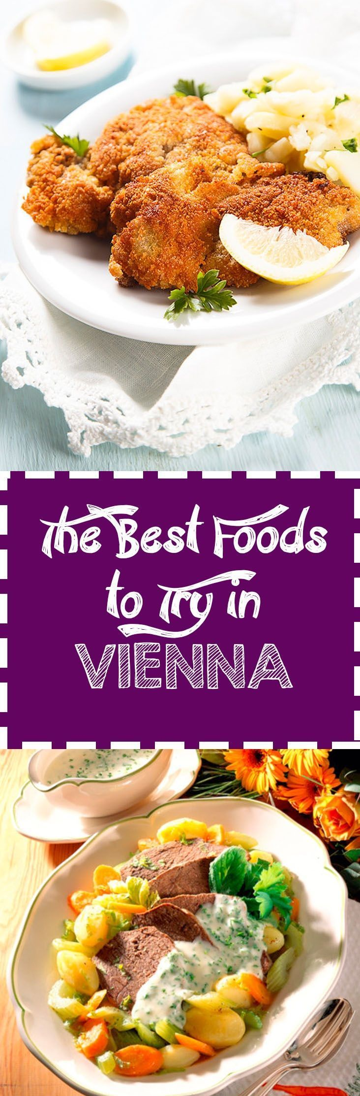 In addition to its political and economic significance as both the capital and the largest city of Austria, Vienna has the second largest German-speaking population in the world and is also regarded as the paradise of food, congregating both international and local fine cuisine!
