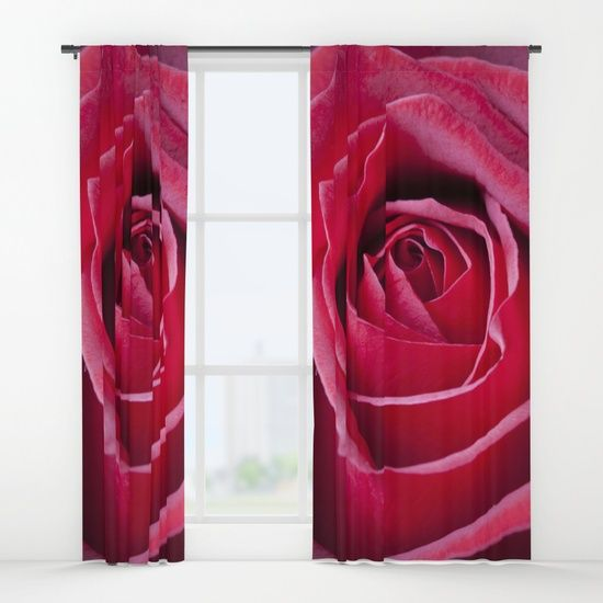 Rose, red, curtain, single, double, macro, bloom, flower,