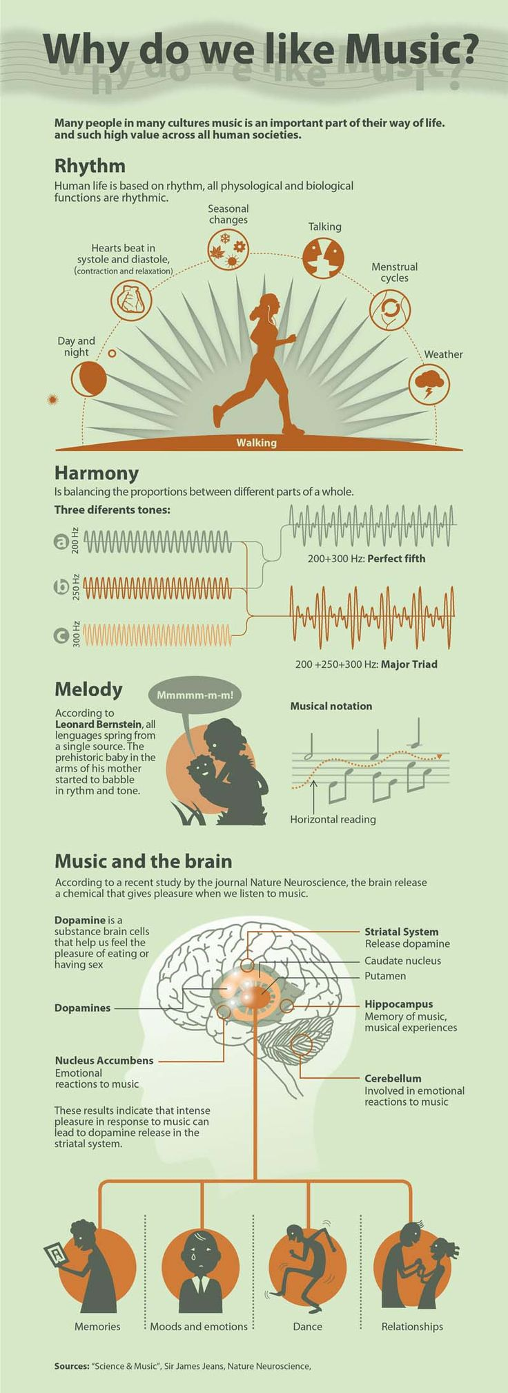 Infographic Why Do We Like Music?Many people in many cultures music is an important part of their way of life and such high value across all human societie