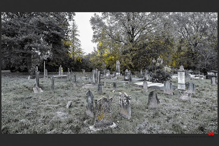 https://flic.kr/p/BwvLGy | Autumn at the Jewish cemetery in Ferrara | © All rights reserved. Use without permission is illegal.