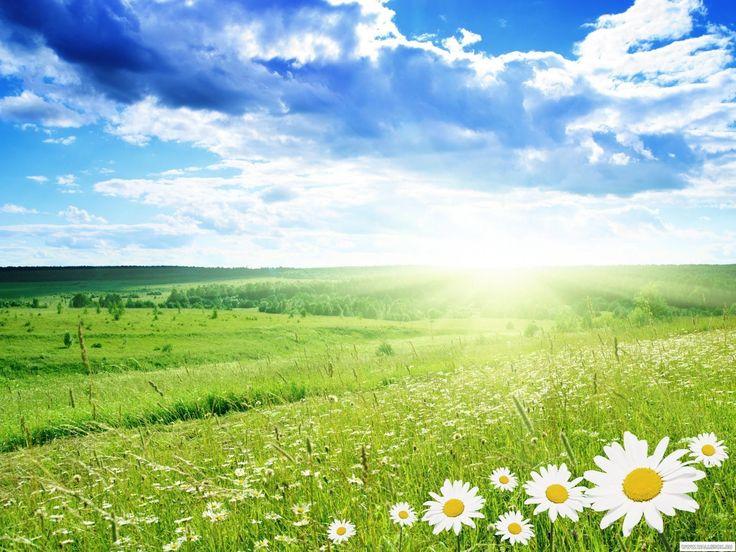 Летняя пора – это период вкусных фруктов, красивых цветов и теплого ветра. Но кроме всего этого, это также еще и период палящего солнца. Но даже при низкой температуре следует помнить о том, что солнечные лучи также попадают на вашу кожу, поэтому использование крема с защитой SPF-15 обязательно! Комфортная температура летом для разных типов людей может быть своя. А какую температуру предпочитаете вы?