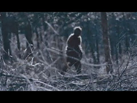 The Clearest Images of Bigfoot Ever Captured (Compilation Pt. 22)