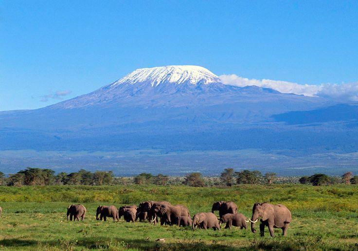 Africa...Kilimanjaro