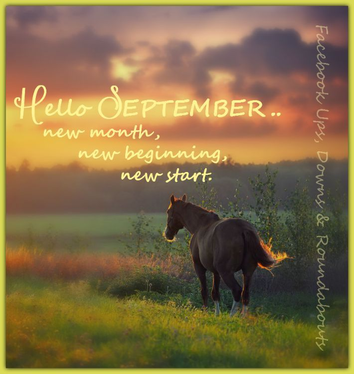 New Month Fresh Start Daily Inspiration Quotes