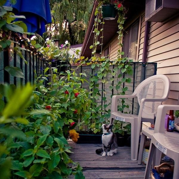 80 best the garden board images on pinterest gardening for Fall balcony decorating ideas