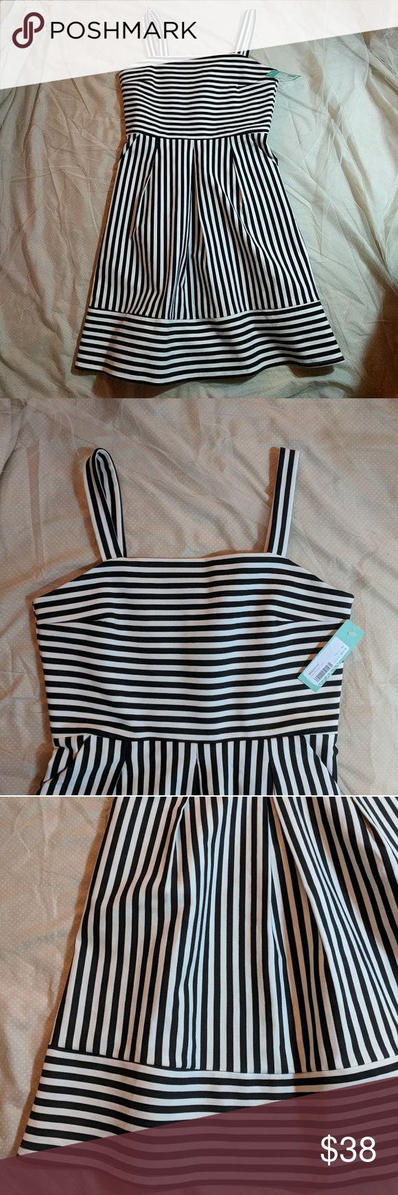 "NWT Brixon Ivy Ponte Black and White Striped Dress Brand new dress called the Levi Ponte by Brixon Ivy bought from Stitch Fix. Cute black and white stripes. Zippered back and made of a somewhat heavy ponte with some stretch. Plus it has pockets!  Length: 36.5"" Bust: 35"" but has stretch Brixon Ivy Dresses Midi"