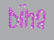 Dina Name