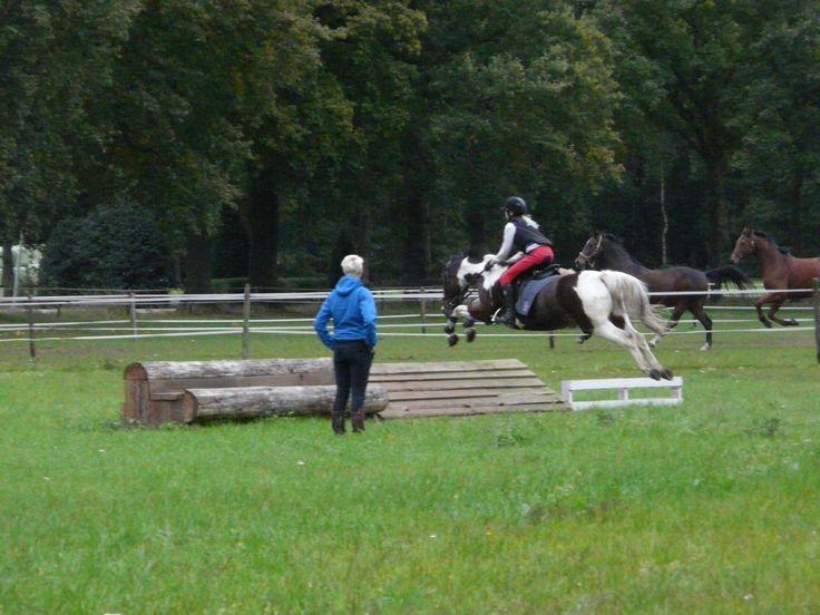 Dit vind ik één van de mooiste foto's van de crossles, ondanks dat haar pony bij het neerkomen bokte en zij eraf viel.