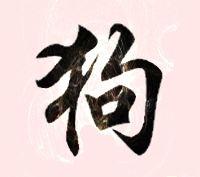 Chien chinois le bon compagnon, horoscope chien chinois le serviteur du zodiaque chinois