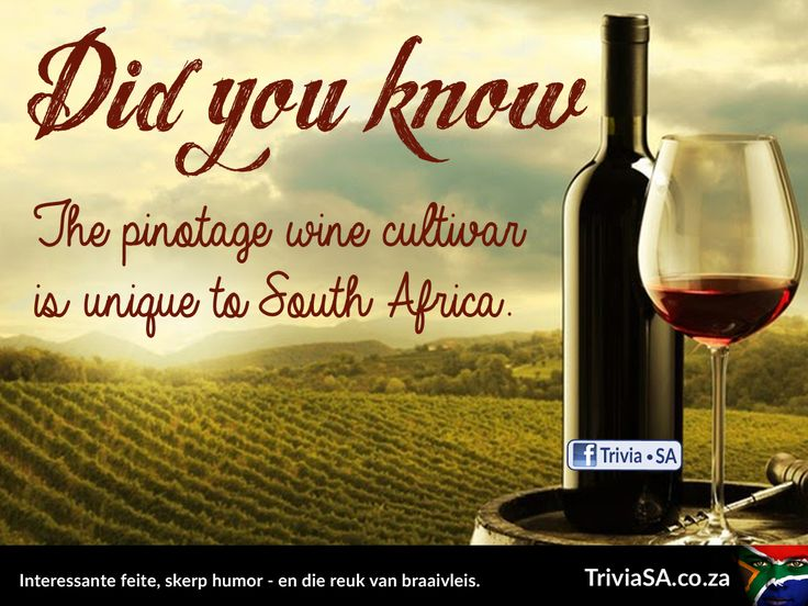 "The pinotage wine cultivar is unique to South Africa. Article here: http://triviasa.co.za/2014/02/something-didnt-know-pinotage/ (This ""did you know"" card was designed by AdSpark: adspark.co.za)"
