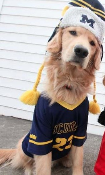 His Ohio State doggie friend was cropped out, naturally.