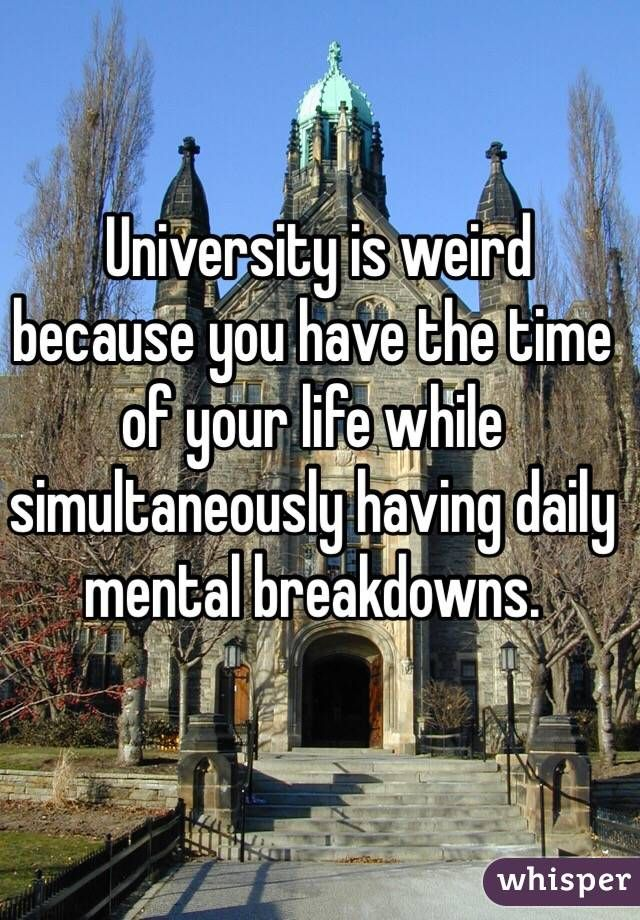 University is weird because you have the time of your life while simultaneously having daily mental breakdowns.