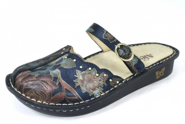 I have yet to break down and buy a pair of Alegria shoes YET.  But I think they are beautiful!!!!