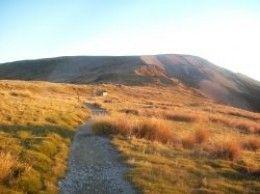 Mount Robert Track near Relax Hut at Lake Rotoiti