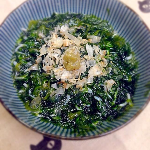 初めて生海苔を酢の物に。 でも、味噌汁に入れて香りを楽しむ方が好きかな〜(⌒▽⌒) - 88件のもぐもぐ - 生海苔、メカブ、シラスの酢の物。柚子胡椒添え✨ by にゃんこmo