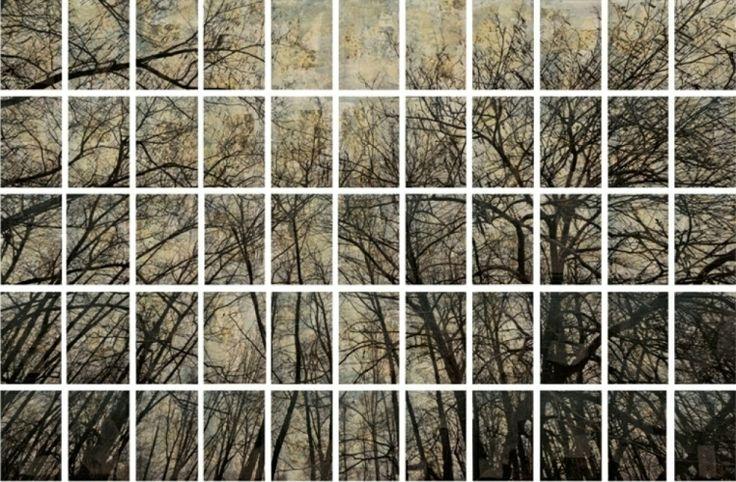 Trees, mixed media on canvas, cm 183x297