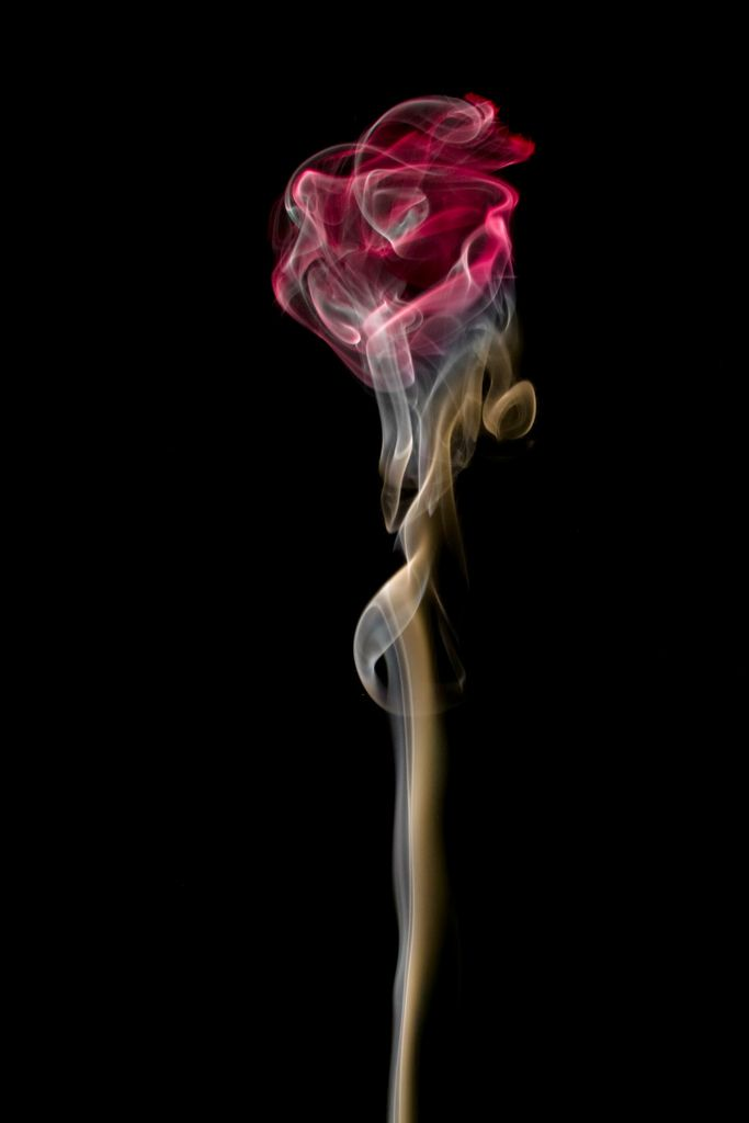 Smoke Art. This rose is an actual image of smoke - the only change is the colour added by Photoshop.