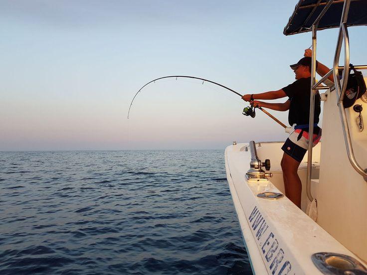La pesca no pertenece al mundo de la ciencia exacta, y aunque por los ciclos biológicos de los peces y por las temperaturas del agua se pueden establecer ciertas épocas mejores que otras para la captura de las diferentes especies, nunca podemos descartar los avances y retrasos en las temporadas, básicamente debidas a la climatología, que hace variar la temperatura del agua y con ello toda la cadena trófica queda alterada.  http://housingandfishingjb.com/informacion-sobre-pesca-2/
