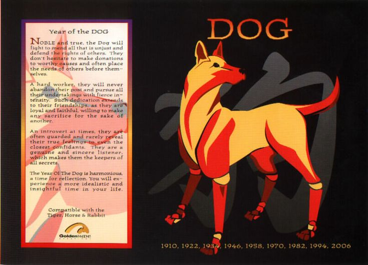The Chinese Astrology: Chinese Horoscope Signs: The Dog
