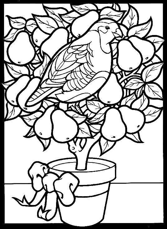 coloring page partridge in a pear tree coloring page twelve days of christmas clip art Christmas Twelve Days of Flannel
