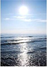 Florida - Golf von Mexico -   blog.FloridaHomes24.com