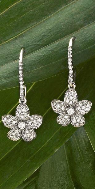 Love these romantic and feminine diamond earrings.