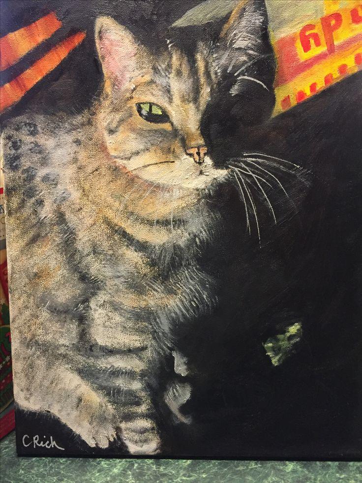 Bob-oil on canvas by Carol Rich