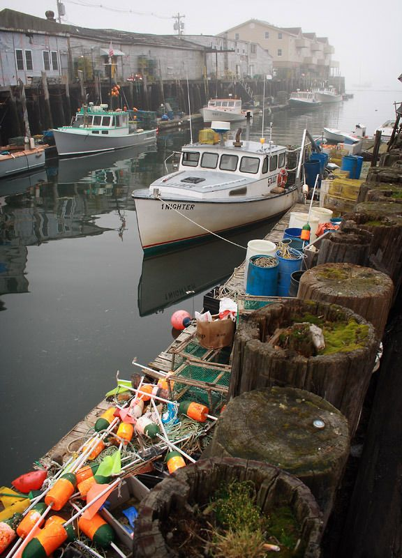 372 best maine images on pinterest for Fishing in portland oregon