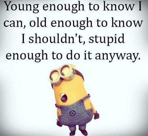 Funny Quote Of The Day Endearing 352 Best Minion Quotes Images On Pinterest  Funny Stuff Funny