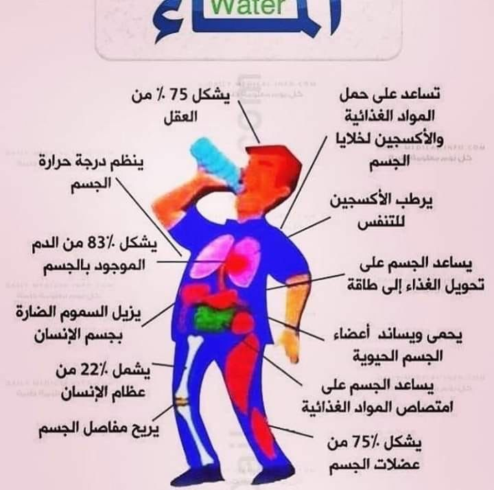 Pin By Azhar Alkenany On صور In 2020 Health And Fitness Expo Health Fitness Nutrition Health And Fitness Tips