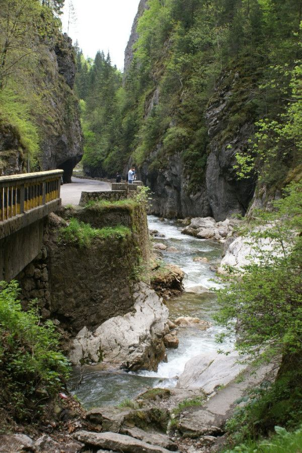 Romania Cheahlau Mountains - Bicaz Canyon and one of the gorges