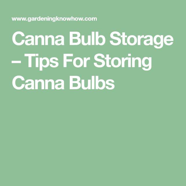 Canna Bulb Storage – Tips For Storing Canna Bulbs