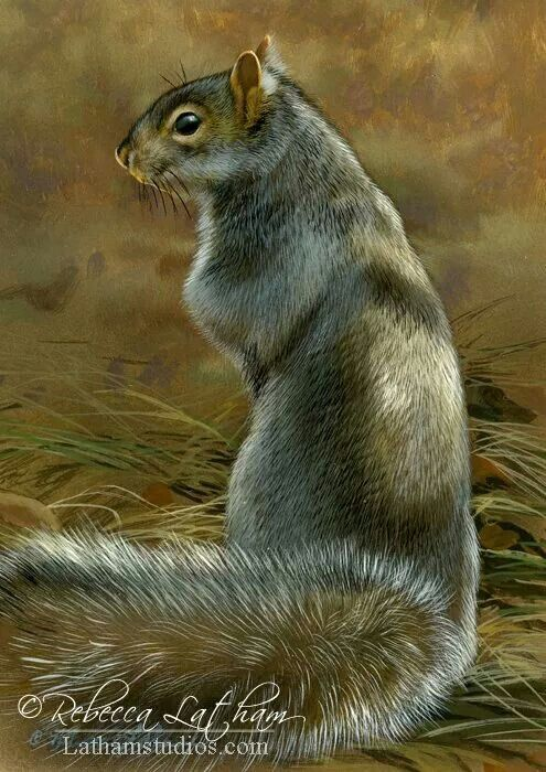 Très 38 best Rebecca Latham art images on Pinterest | Animal paintings  HZ95