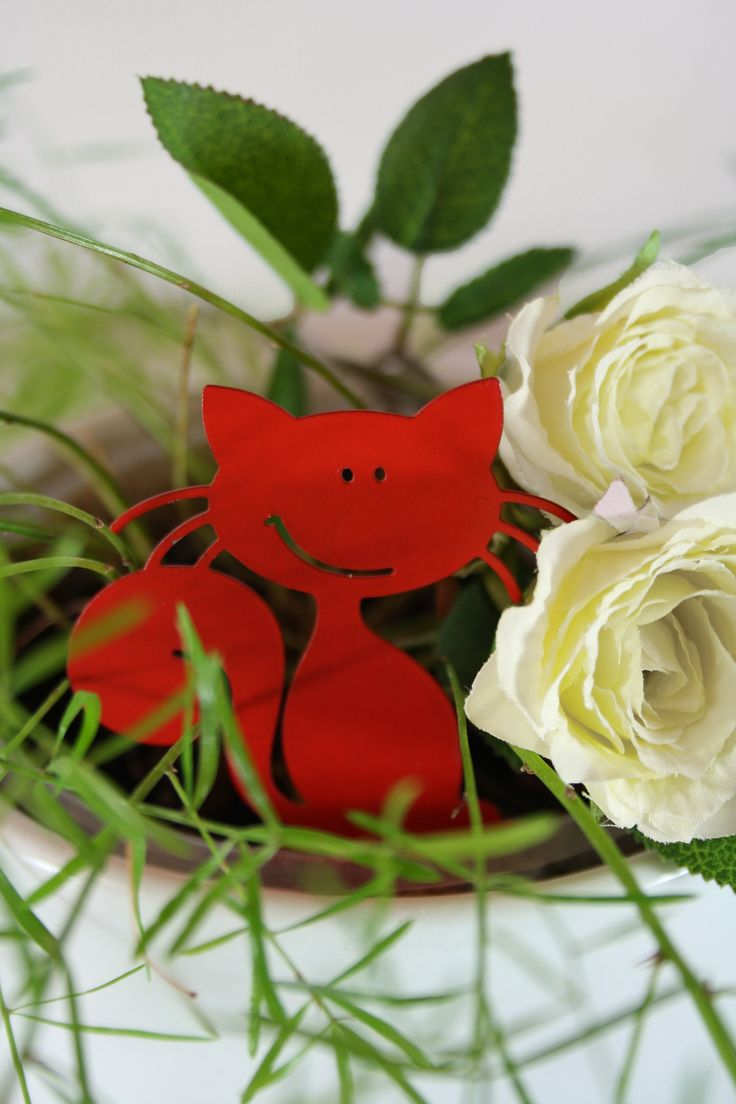 """Cat"", red 