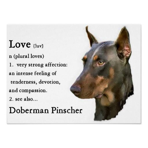 So very true! I found this from Doberman Pinscher Fan Club. foreverfriends.ca...