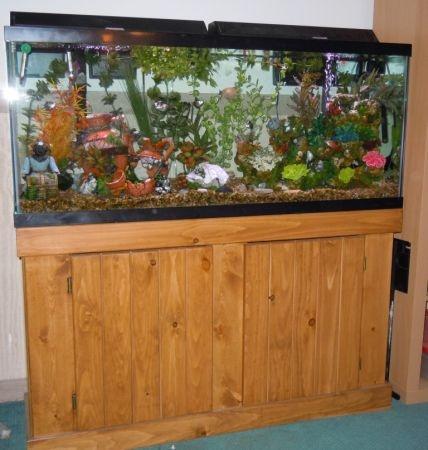 25 Best Ideas About 55 Gallon Aquarium Stand On Pinterest