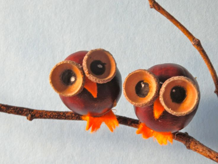 Owls made from chestnuts and acorns...♔..