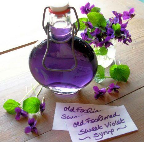 Erbe e fiori primaverili: 10 ricette per sciroppi, acetoliti e vini curativi