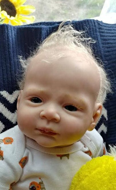 15 Best Reborn Babies For Adoption Images On Pinterest