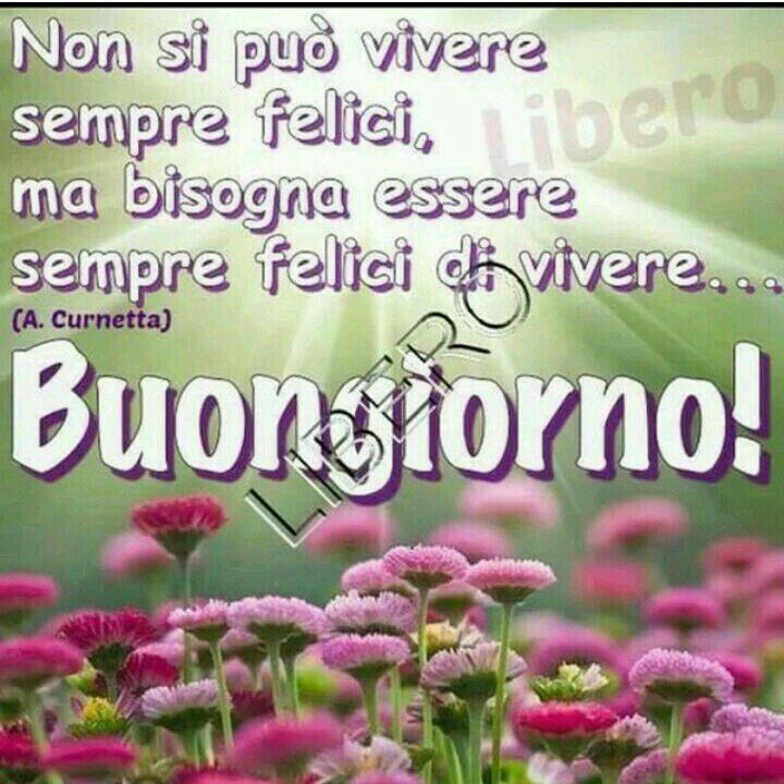 94 best images about buonanotte buongiorno on pinterest for Buongiorno divertente sms