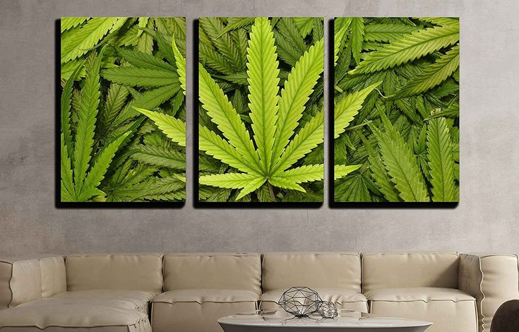 This cool canvas wall art of marijuana leaves is great for brightening that weed dungeon of yours. It comes in 3 pieces and is very modern looking.