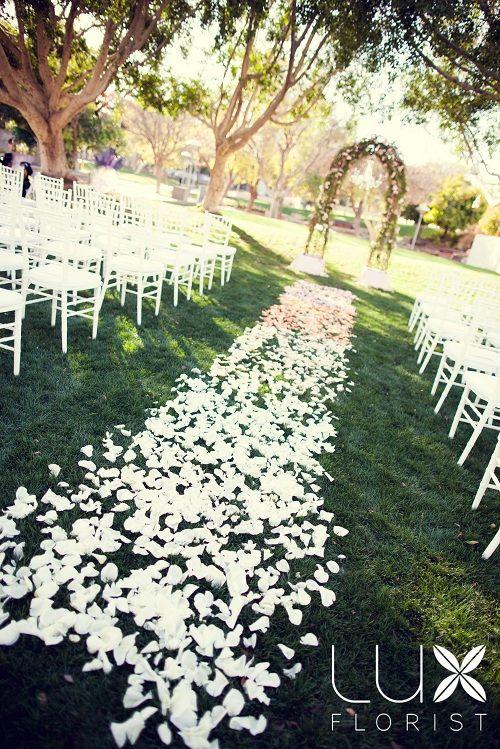 Wedding Rose Petals | Midway Media