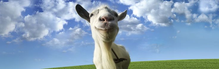 Goat simulator is like the opposite of No Man's Sky. They promised nothing but delivered everything!