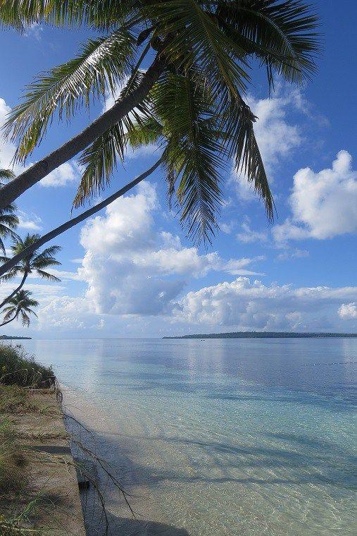 Indonesia - Wakatobi - Wakatobi Dive Resort