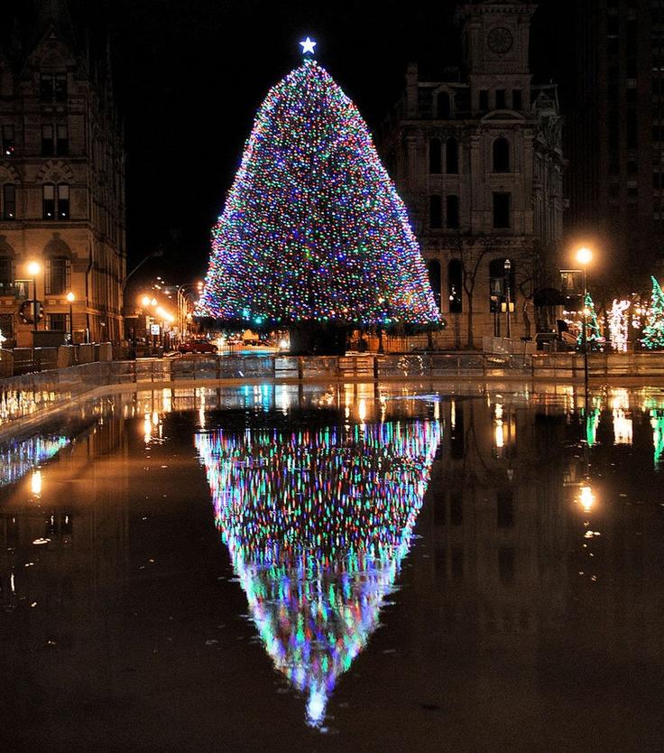 Syracuse Christmas Tree At Clinton Square Dennis Nett