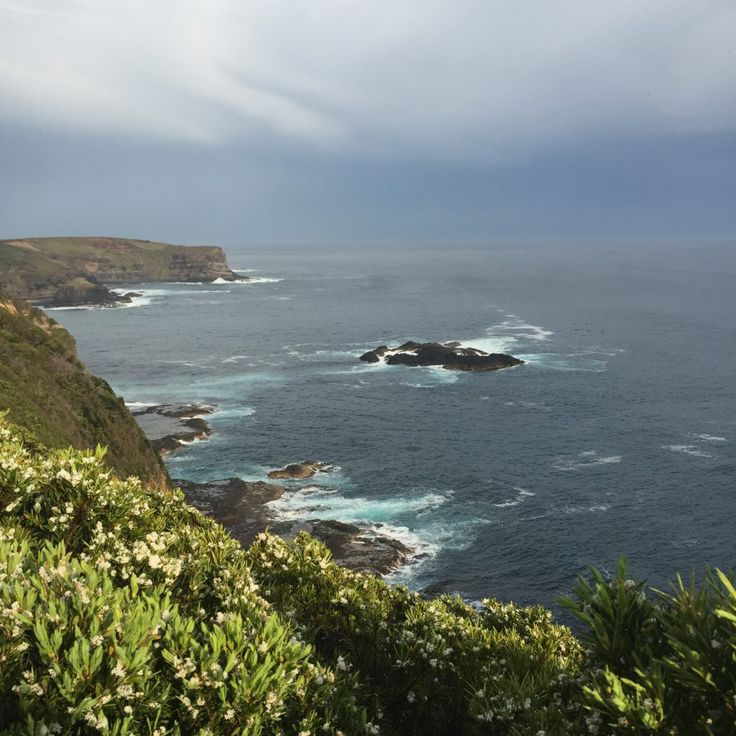 View from the cliff top en route to Bushranger's Bay | see/do/wander