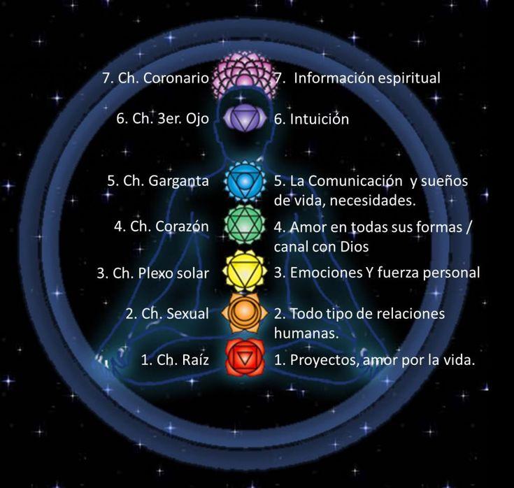 Para entender la relación y el efecto de los chakras y el Reiki primero debes entender qué es el chakra. Hay un cuerpo espiritual reside en su cuerpo físico y los chakras son parte de eso. Son las puertas de entrada de la Aura y son el centro de actividad que asimila, recibe y expresa la fuerza vital de la energía. Chakra es palabra sánscrita que significa rueda o un disco. Los chakras son responsables de las funciones físicas, mentales y espirituales del cuerpo. Los chakras absorben la…