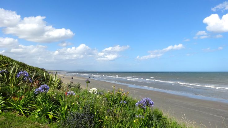 View from The Cottages towards Bettystown. Six miles of wonderful sandy beach.