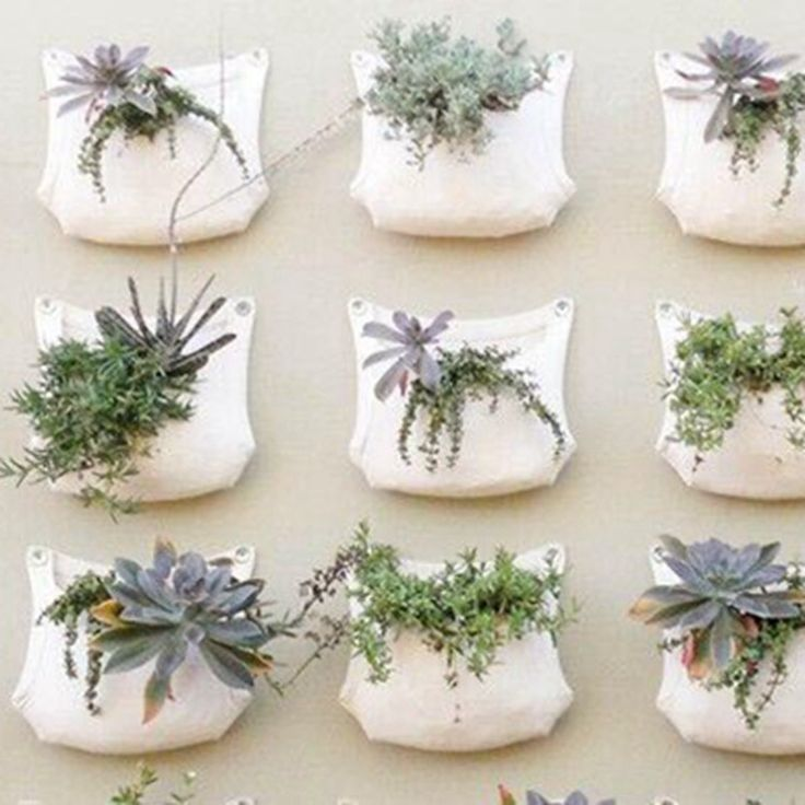 35 Indoor Garden Ideas To Green Your Home: 25+ Best Ideas About Hanging Plants On Pinterest